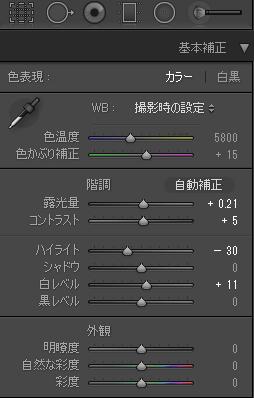 ハイライト-30、白レベル+11