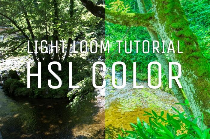 【Lightroom】HSLカラーを使って幻想的な雰囲気の写真現像に挑戦